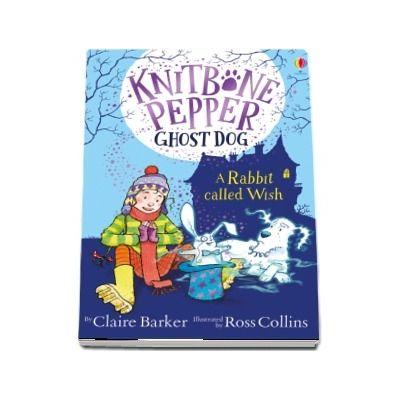 Knitbone Pepper Ghost Dog: A Rabbit Called Wish