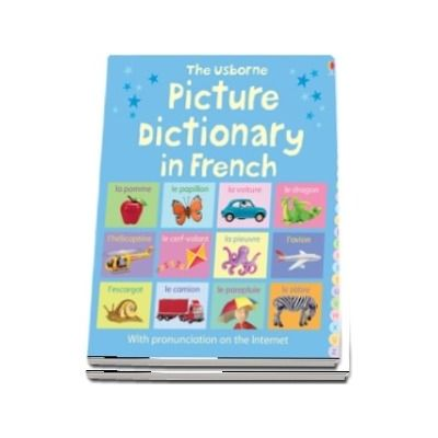 Picture Dictionary in French