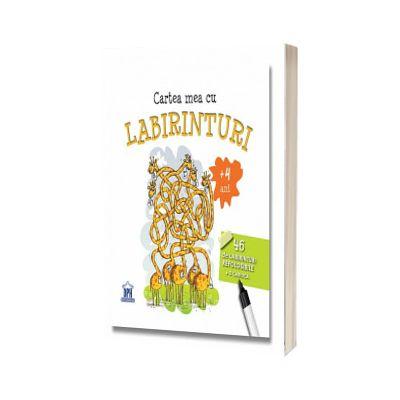 Cartea mea cu labirinturi - 46 de labirinturi refolosibile o carioca
