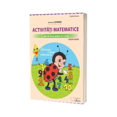 Activitati matematice, caiet de lucru pentru 5-6 ani. Buburuzei ii place matematica, Catalina Mocanu, CABA